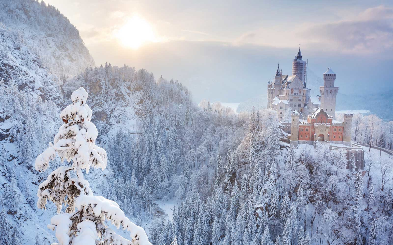 Visit Neuschwanstein Castle in Winter