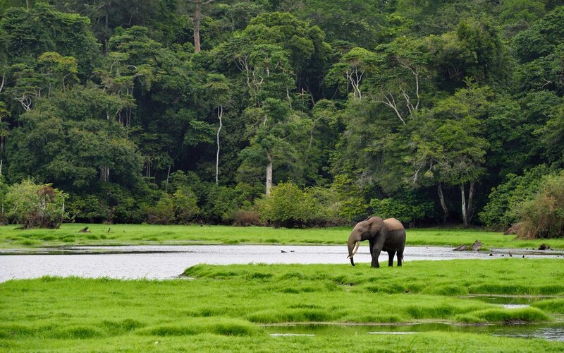 Loango National Park, Gabon