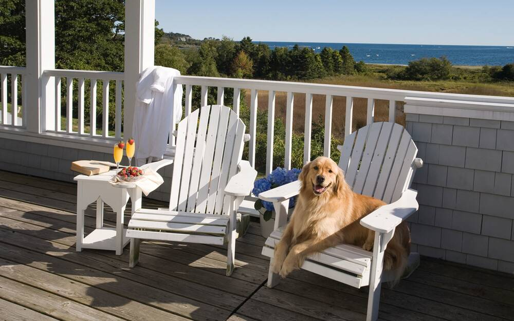 Sea Glass Restaurant, Inn by the Sea,, Cape Elizabeth, Maine - The Most Dog-friendly Restaurants In The U.S. Travel + Leisure