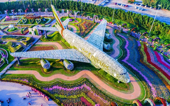 the world s biggest flower garden sits in the middle of a desert