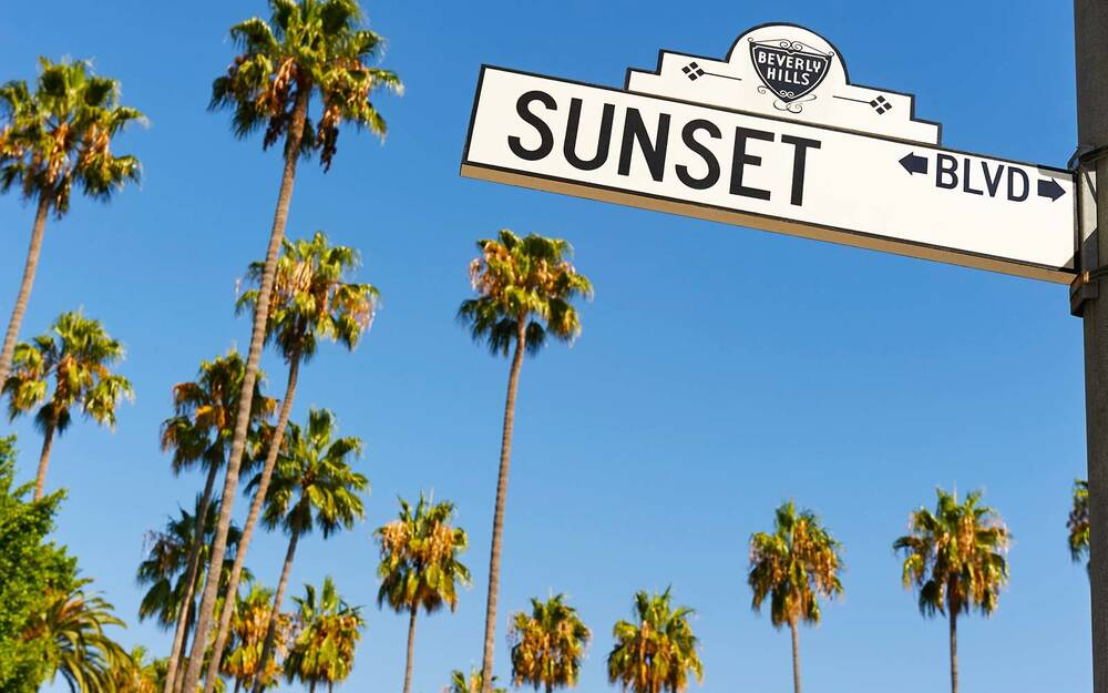 los angeles palm trees are disappearing travel leisure