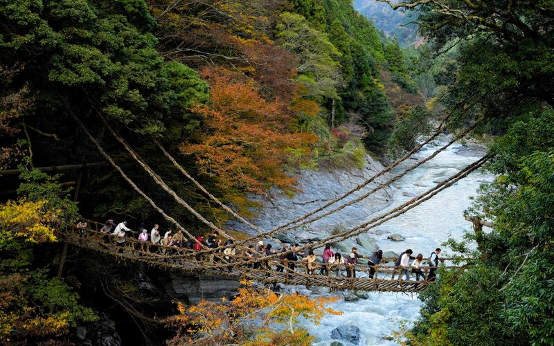 Japanese people crossing the famous vine bridge at Kazurabashi, Iya Valley, Tokushima, Shikoku, Japan.
