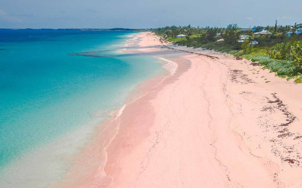 Pink Sand Beach Harbour Island The Bahamas