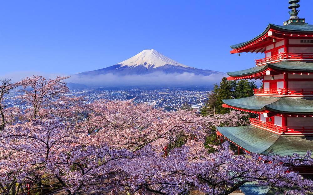 japan cherry blossom festival 2018 where and when to visit travel