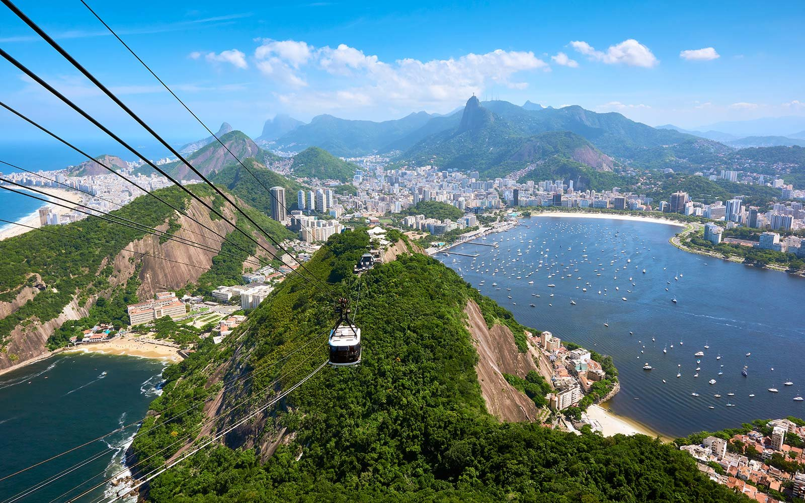 Brazil  >> A Yellow Fever Outbreak Is Happening In Brazil Here S What