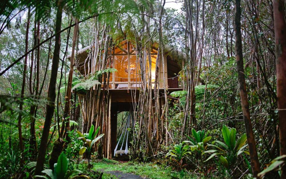 this treehouse in the middle of a hawaiian forest is one of the