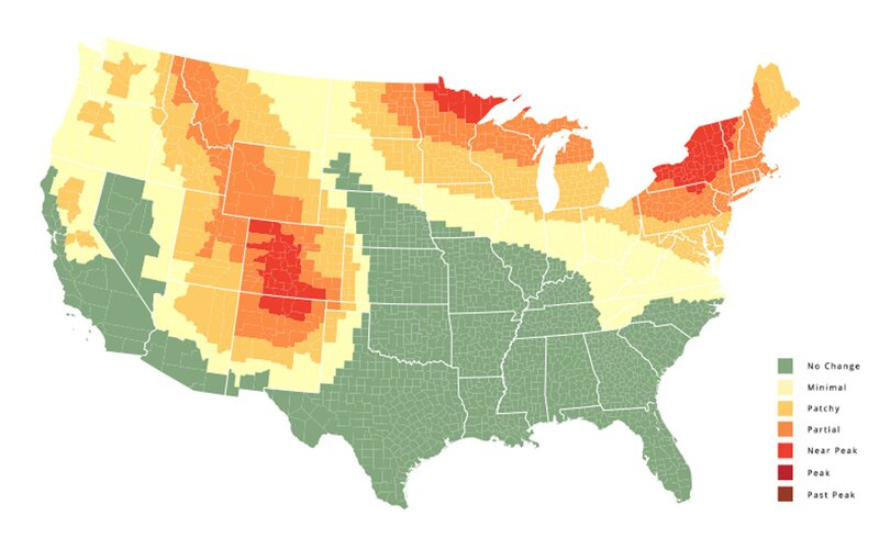 Fall foliage map lead image.