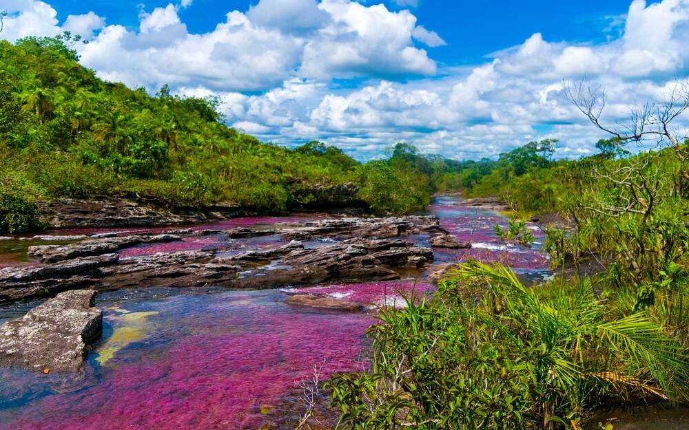 this river in colombia turns into a liquid rainbow you have to see