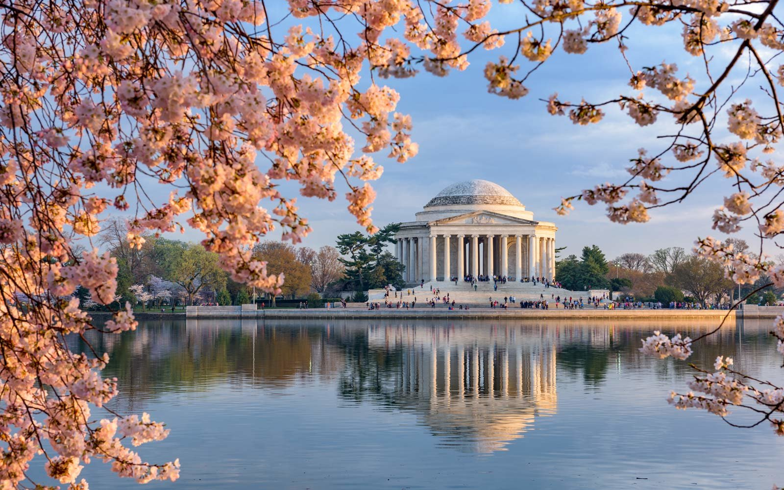 Cherry Blossoms 2019 Where And When To See Them Bloom Travel