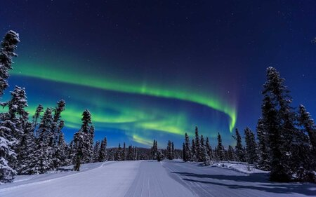 Northern Lights, Alaska - This Alaskan Train Under The Northern Lights Is A Magical Way To