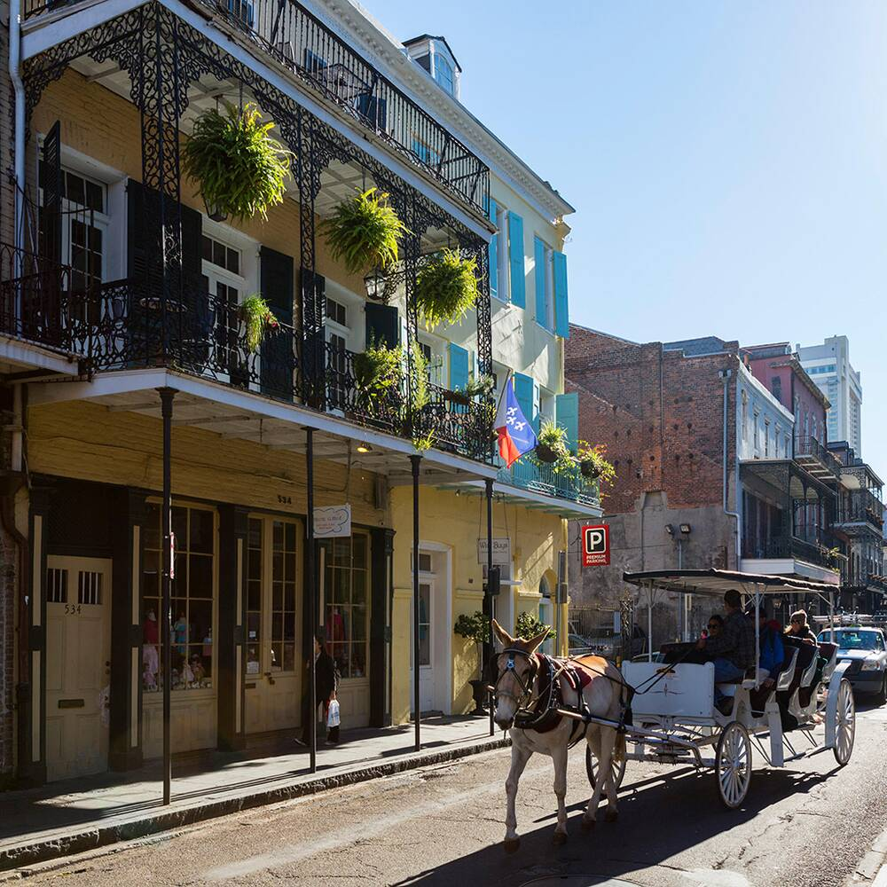 best tours in new orleans travel leisure
