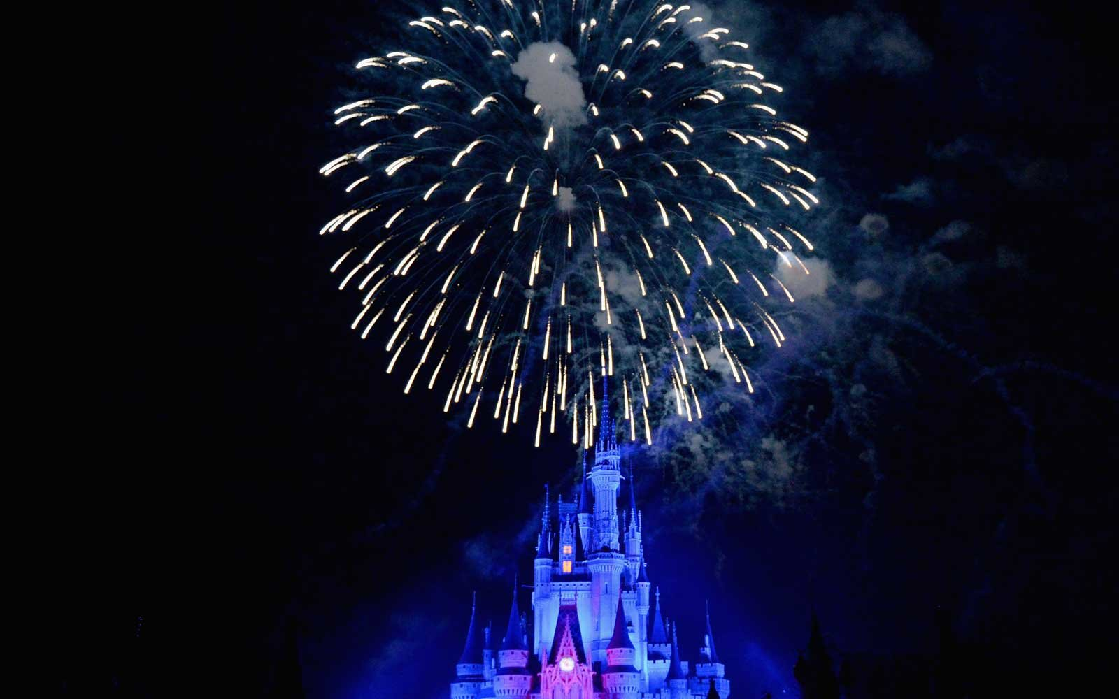 Everything You Need To Know About Going To Disney World Travel