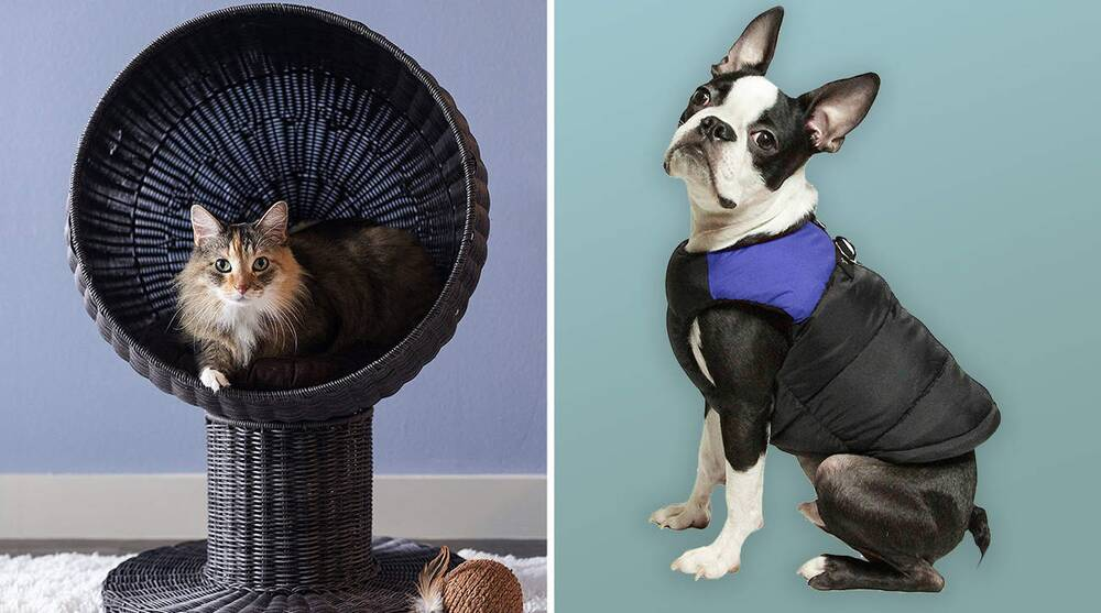 best gifts for dog and cat owners