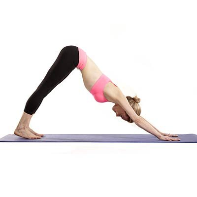 Slim Arms Downward Dog