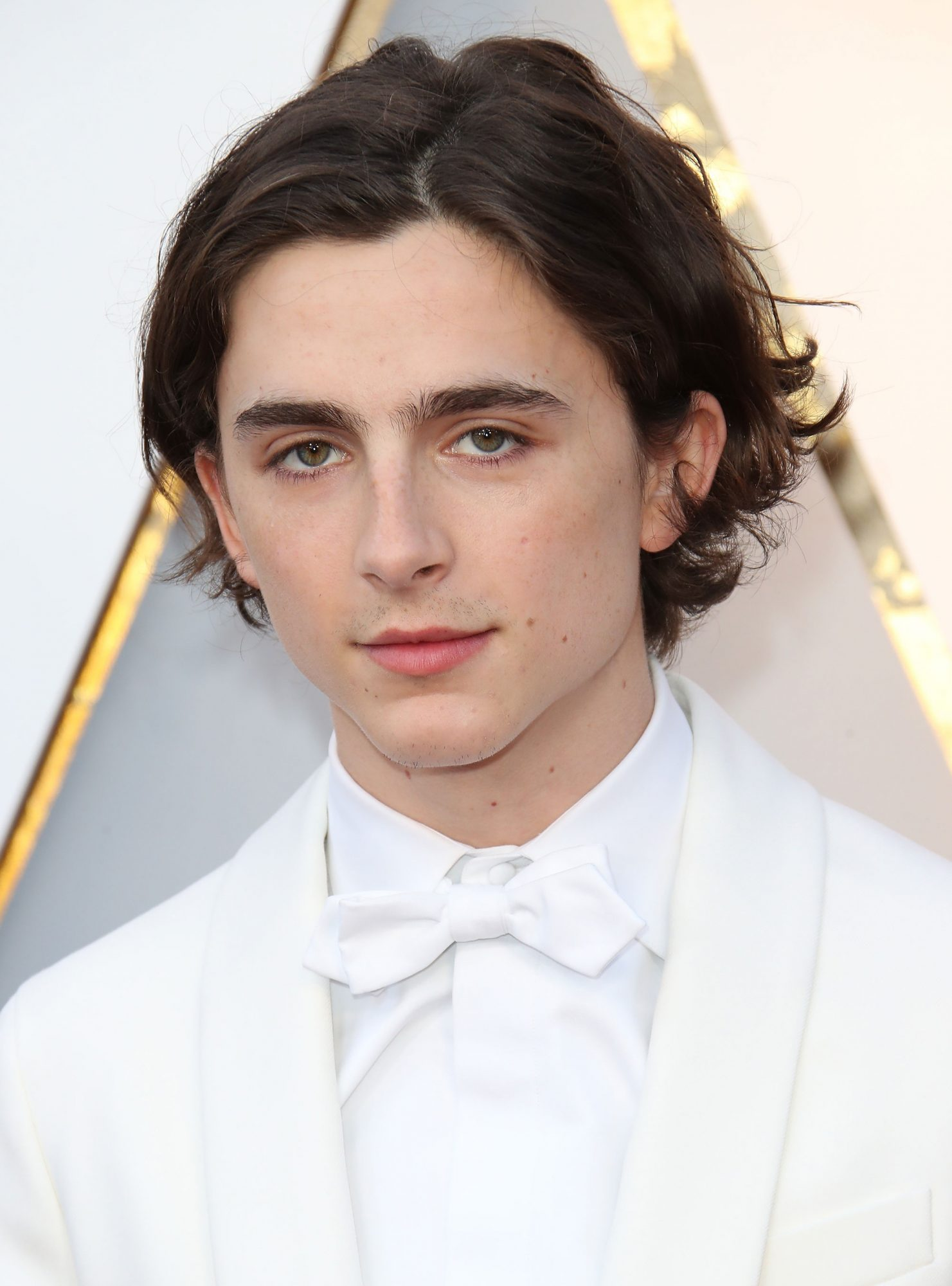 Timothee Chalamet Cut Off All Of His Hair Into A Bowl Cut Instyle Com