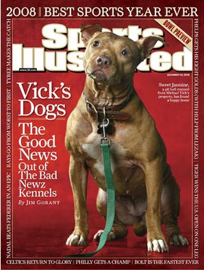 what happened to michael vick s dogs si com