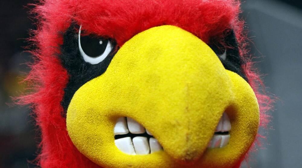 fd8fe106ecc Louisville Cardinals logo. Don Ryan Associated Press. Louisville will wear  retro uniforms for ...