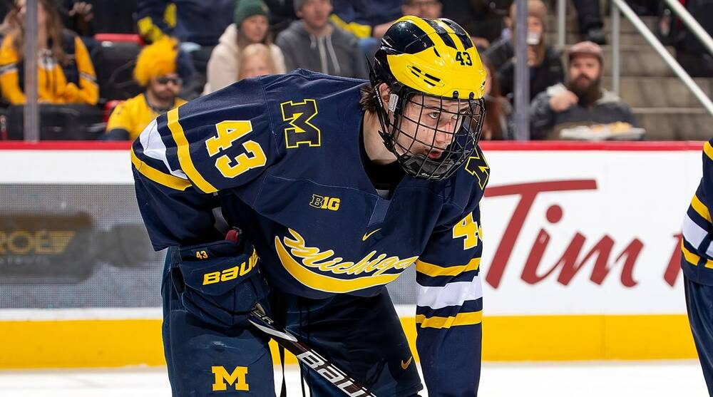 48a11d294 Canucks prospect Quinn Hughes maturing at Michigan before going to ...