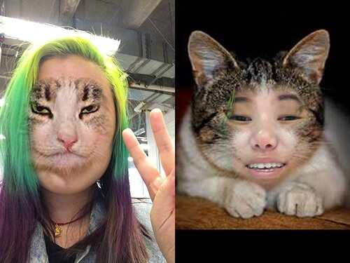 the face swap live app is hilariously terrifying hellogiggles