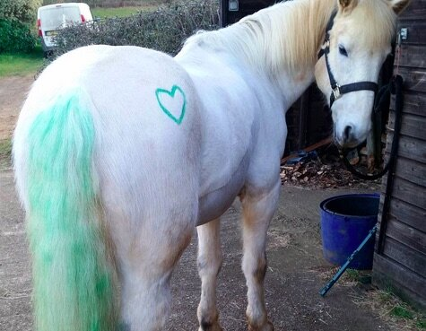 kids are getting ponypaint therapy with real live my little