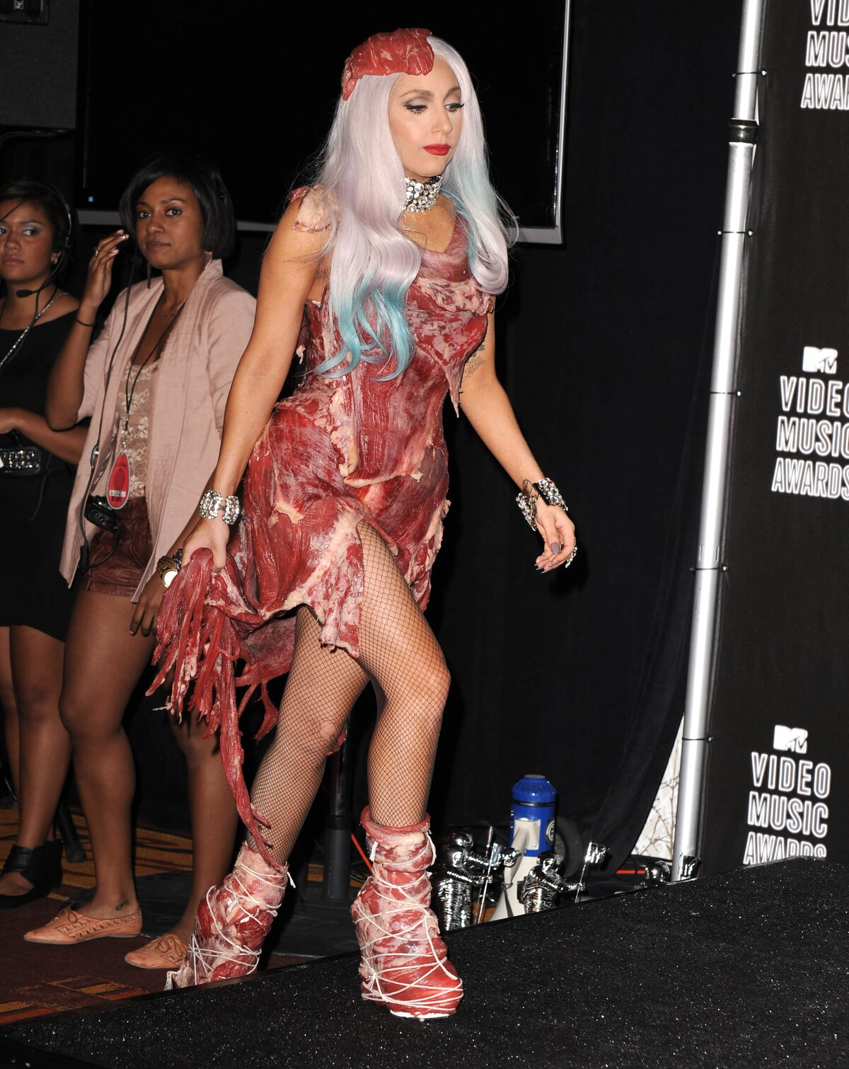 Image result for lady gaga meat dress