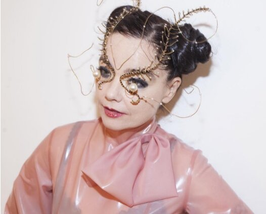 this is what we learned about the goddess known as björk from her