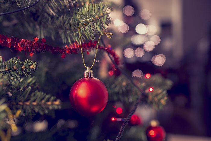 Buy Decorated Christmas Trees