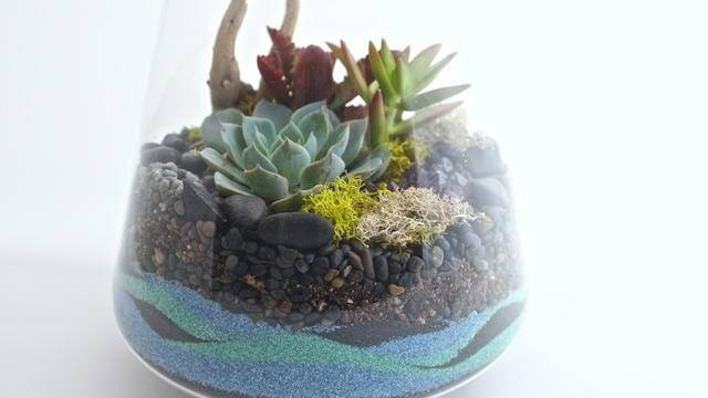 How To Make A Sand Terrarium Sunset Magazine