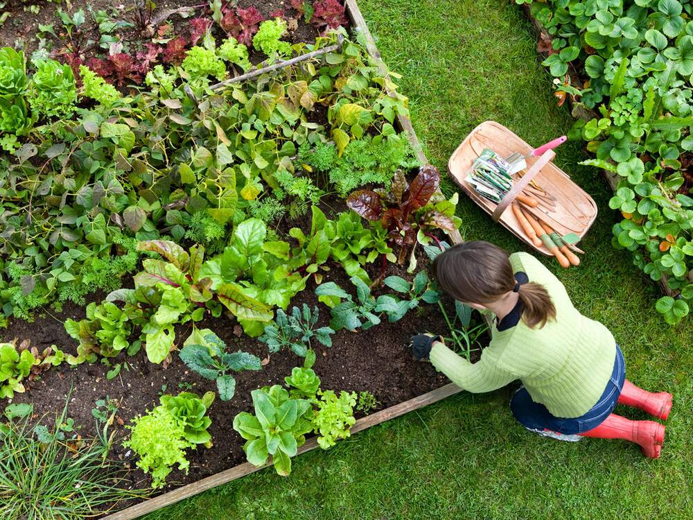 How Gardening Could Help You Lose Weight - Cooking Light