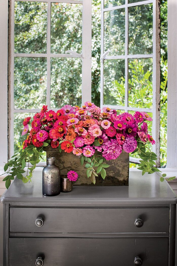 Bring on the Zinnias - Southern Living