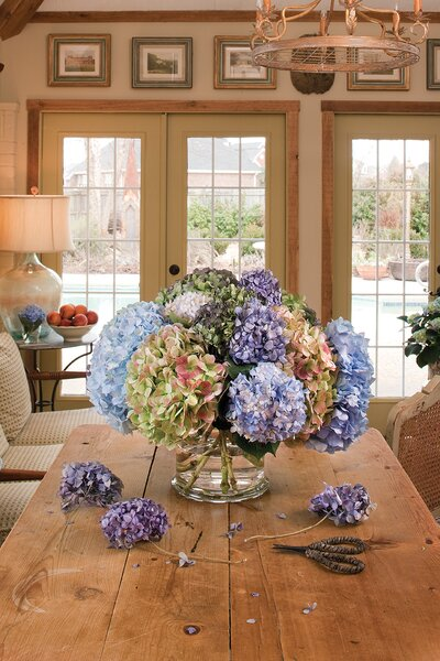 The Secret To Drying Hydrangeas And Other Botanicals Southern Living