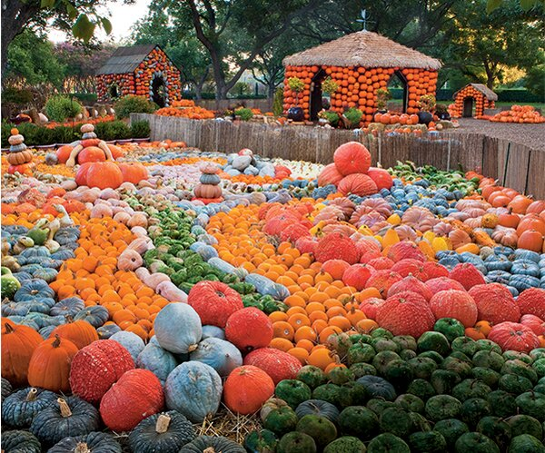 The South S Best Pumpkin Patches