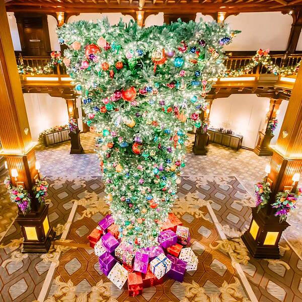 hotel del coronado in san diego christmas decor - Photos Of Decorated Christmas Trees