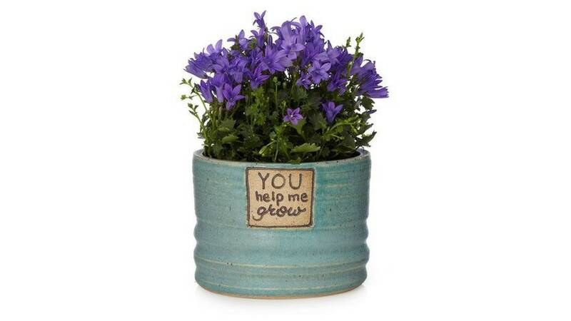 Pots For Indoor Plants Help Grow