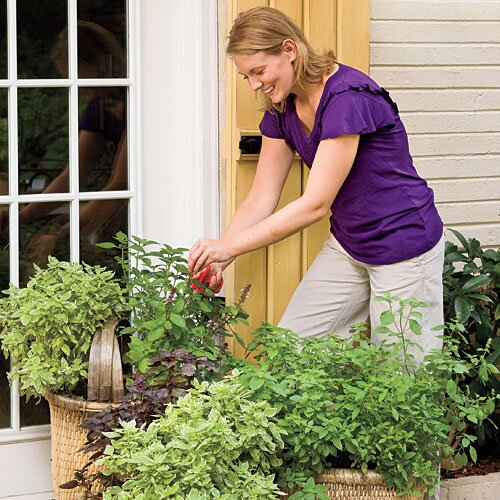 3 Reasons To Grow Your Own Vegetables