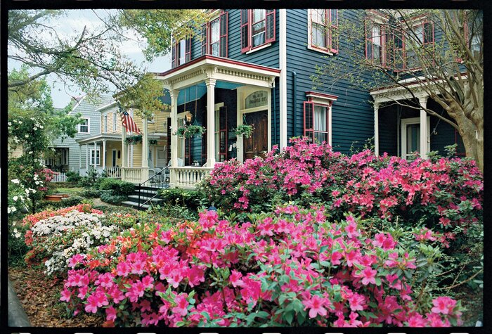 Bloom town wilmington north carolina southern living bloom town mightylinksfo