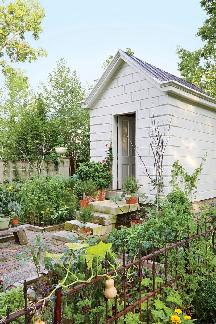 backyard vegetable garden - Backyard Vegetable Garden