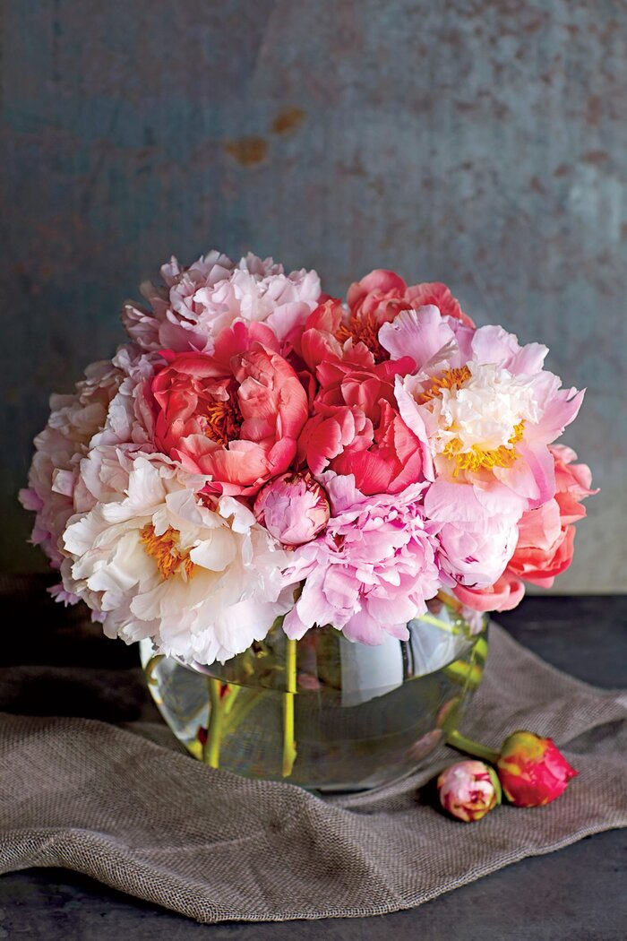 how to dry a peony southern living