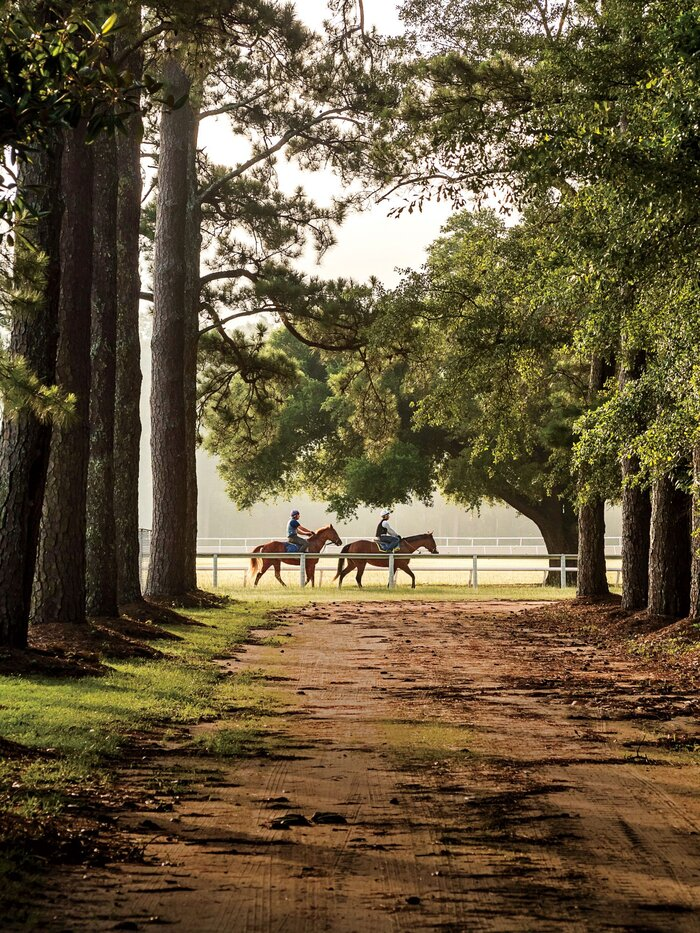 Reasons to Springtime in Horse Country - Southern Living