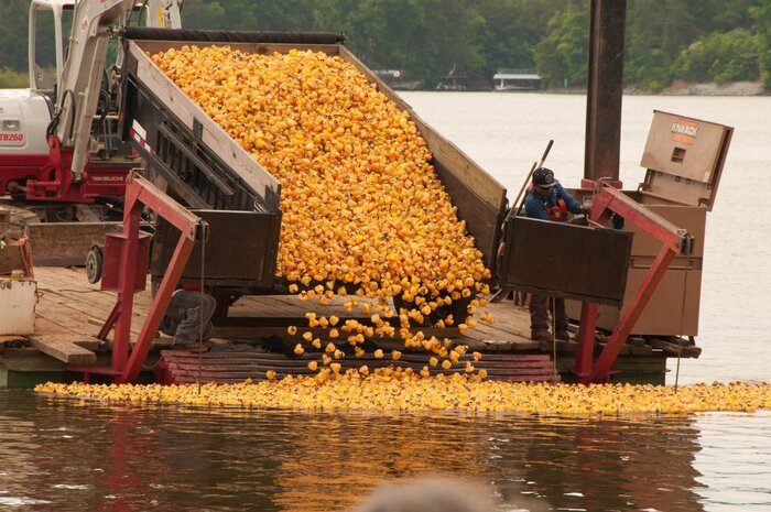 Here\'s Why You Need to Attend a Rubber Duck Derby - Southern Living