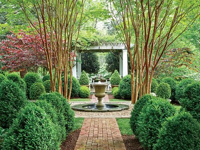 boxwood garden with fountain - Landscaping Pictures
