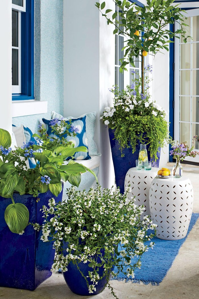 Spring container gardening ideas southern living blue and white spring container mightylinksfo