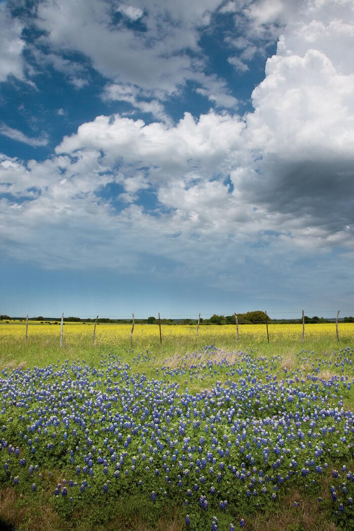 Explore the Heart of Texas - 16 Adventures In Texas' Hidden Hill Country - Southern Living