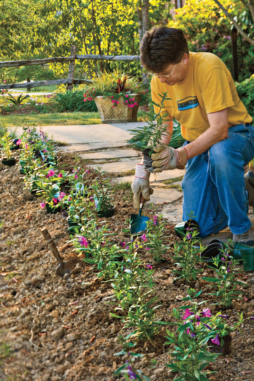 how to plant a flower garden. How To Plant Flowers A Flower Garden