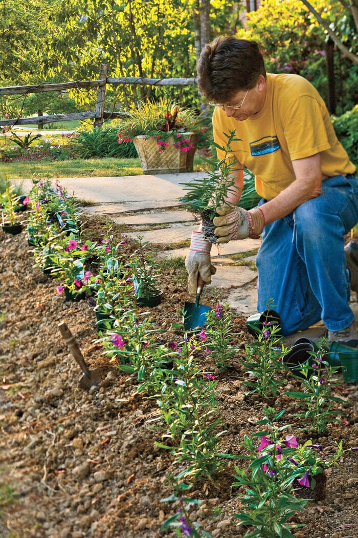 Easy guide on how to plant flowers southern living simple methods mightylinksfo
