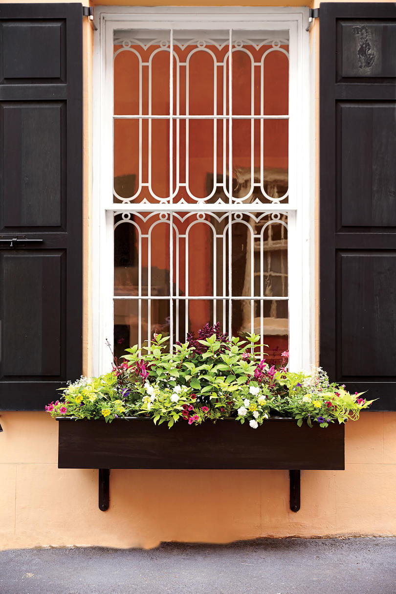 Small Window Box with Greenery