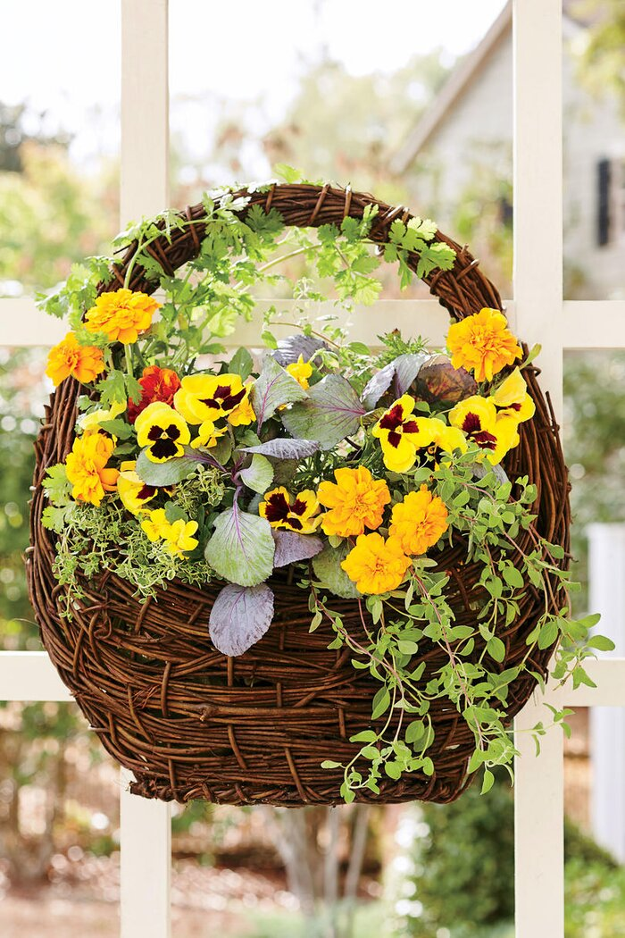 Fall container gardening ideas southern living yellow pansy hanging basket mightylinksfo Gallery