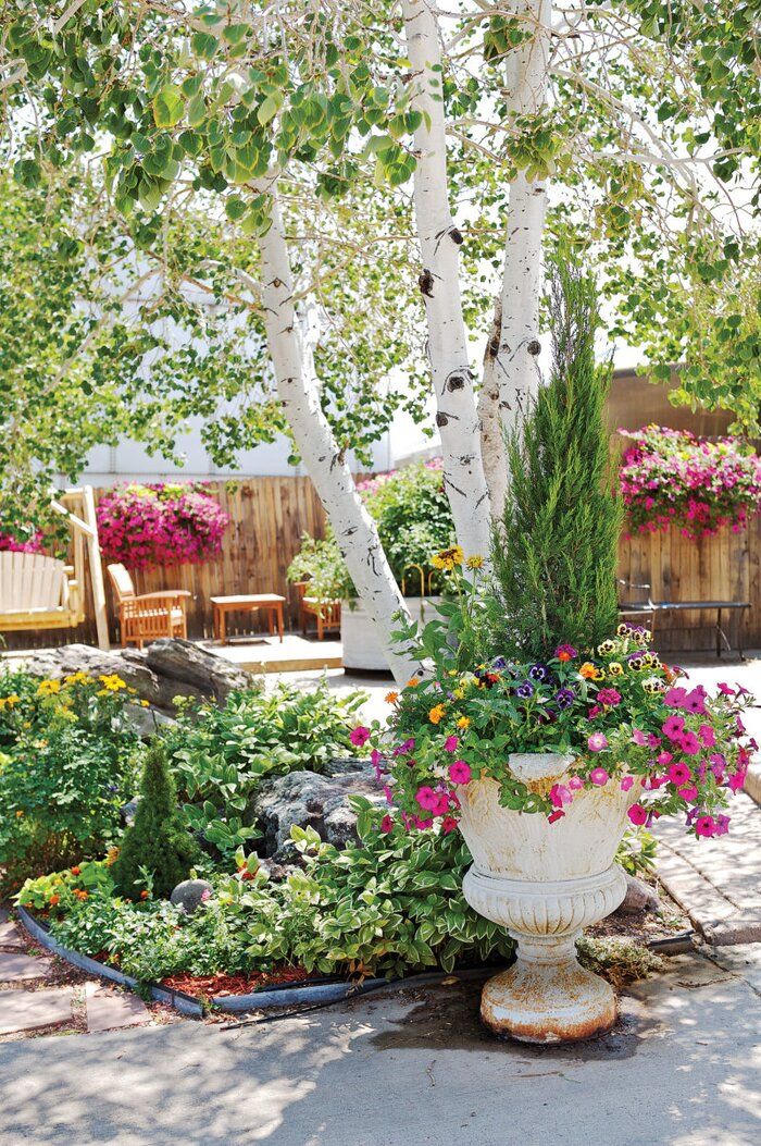 Garden shopping in Denver, Colorado - Sunset Magazine
