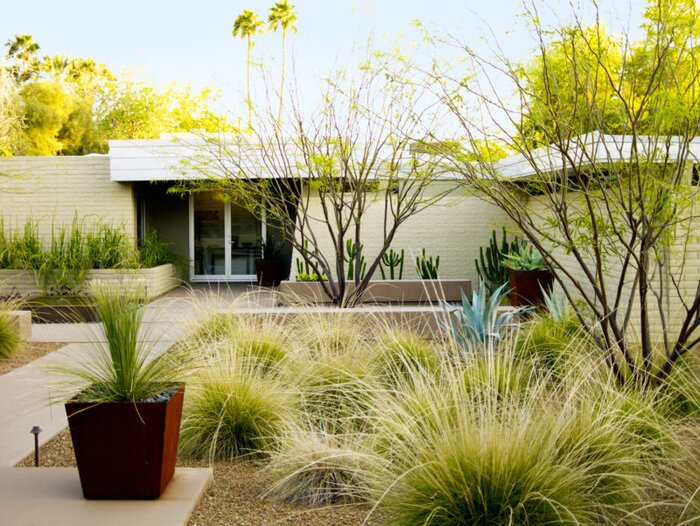 desert landscaping ideas from a phoenix front yard sunset magazine