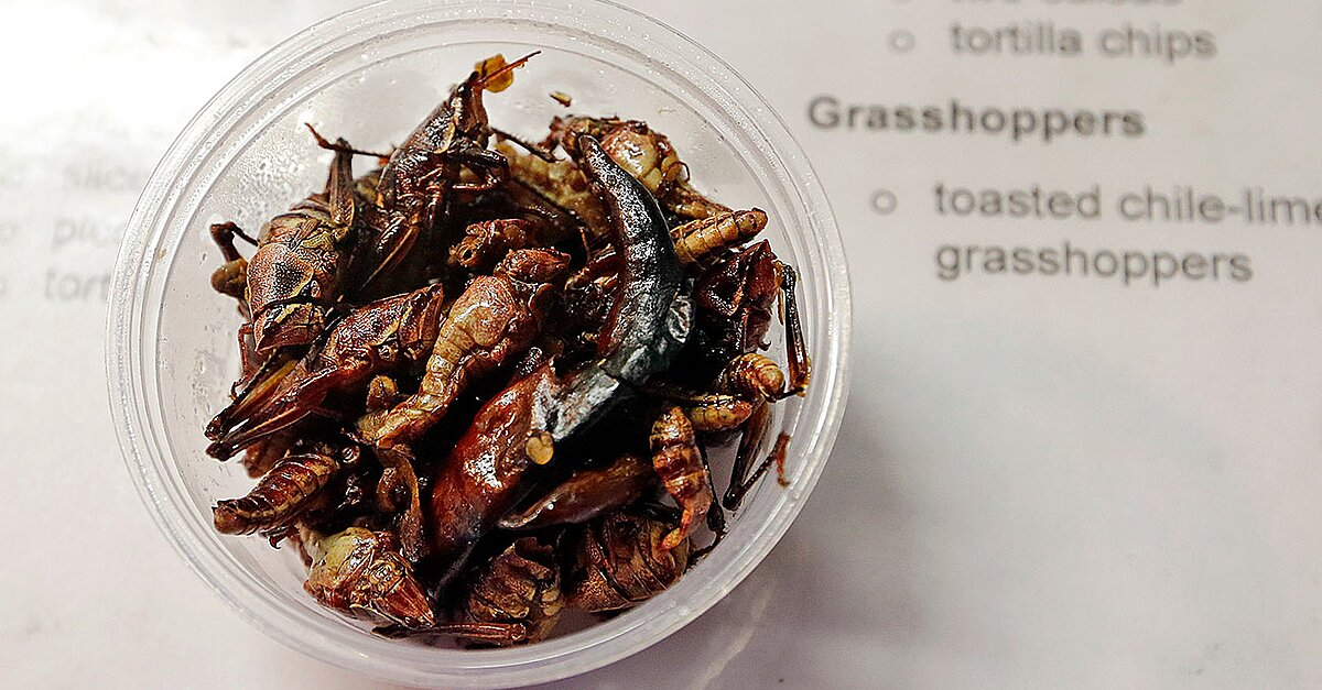How The Mariners Decided To Sell Grasshoppers At Safeco Si